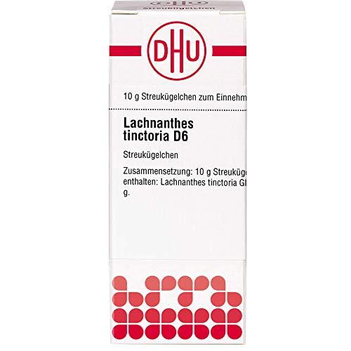 DHU Lachnanthes tinctoria D6 Streukügelchen, 10 g Globuli