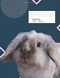 Little Bunny: Composition Notebook with Blank College-Ruled Lined Paper.