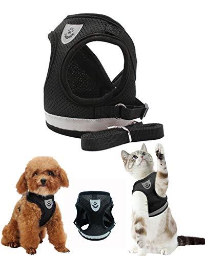 CHONGYA Verstellbares Hundegeschirr kleine Hunde und mittlere Hunde Katze Geschirr katzengeschirr mit Leine aus Atmungsaktives Soft Geschirr mit Reflektierender Streifen mit 1.2 M Hundeleine