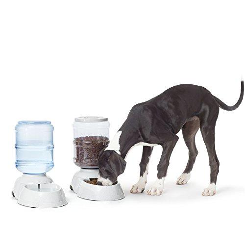Amazon Basics - Futterspender und Wassertränke, Groß