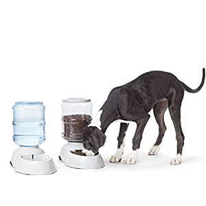 AmazonBasics - Dispensador de agua y comida, Grande 10