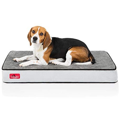 Designer Dog Pad