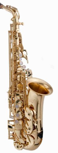 RS Berkeley ALS502 Elite Series Eb Alto Saxophone with Case and Accessories