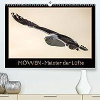 Moewen - Meister der Luefte (Premium, hochwertiger DIN A2 Wandkalender 2022, Kunstdruck in Hochglanz): Moewen in ihrer natuerlichen Umgebung. (Monatskalender, 14 Seiten )