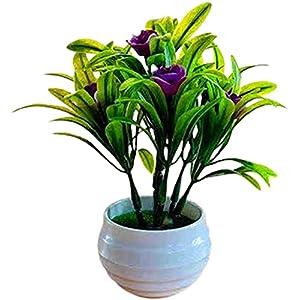 LujiangMingaya Artificial Flower, Artificial Flowerpot, Hibiscus Flower, Hotel Garden Decoration, Plastic Colorful Imitation Flowerpot, Home-red CJXNB (Color : Purplish Red, Size : One Size)