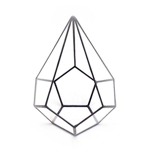 Pyramid Terrarium/géométrique en verre Pot de fleurs/pot de fleurs moderne/fait à la main en Angleterre L noir