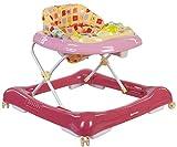 Sun Baby BG0209/R - Andador para bebé con Coche Desmontable, Color Rosa