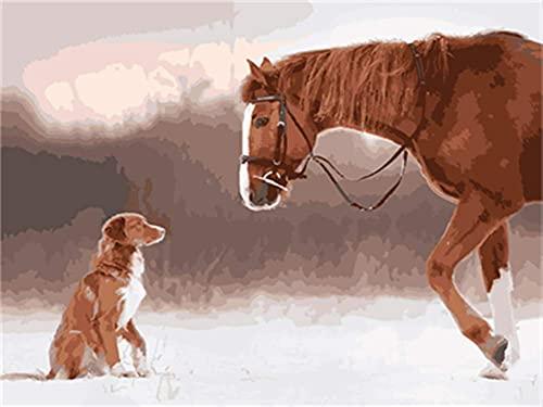 Xpboao Pintar por números - Caballo y Perro Animal - Pintura de Arte Moderno - Kit de Pintura de Bricolaje Adecuado para Adultos y Principiantes - 40x50cm - Sin Marco