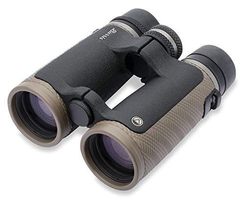 Burris Optics Signature High Definition Fernglas mit schnellem Fokus, Uni, Burris, Signature HD Fernglas, 10 x 42 mm, Dachkantprisma, schwarz, 300293, Flache dunkle Erde, 10 x 42