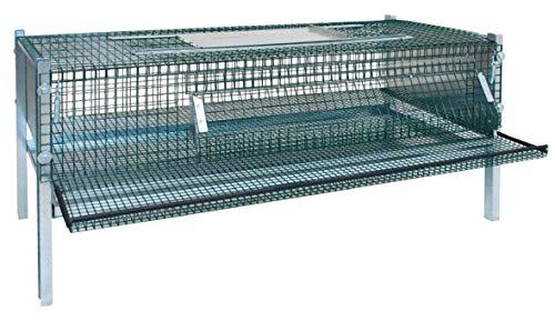 Habee GmbH - Jaula de codorniz de metal, caja de guarnición