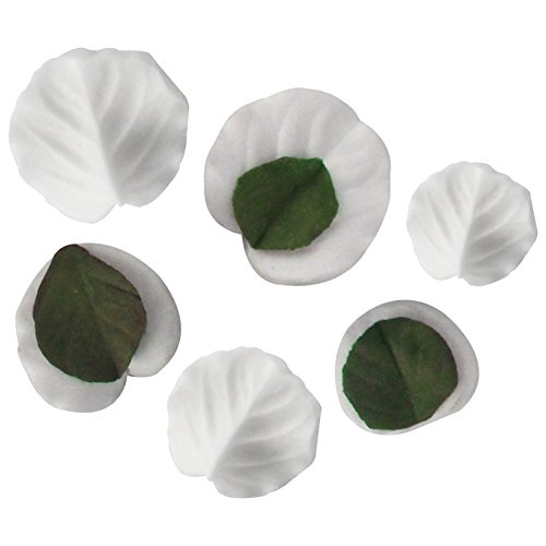 Funshowcase Small Leaves Veiners All Purposes