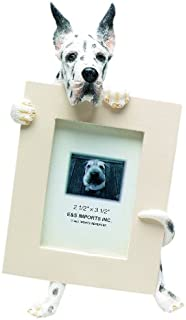 Harlequin Dane Picture Frame Holds Your Favorite 2.5 by 3.5 Inch Photo, Hand Painted Realistic Looking Harlequin Dane Stands 6 Inches Tall Holding Beautifully Crafted Frame, Unique and Special Harlequin Dane Gifts for Harlequin Dane Owners