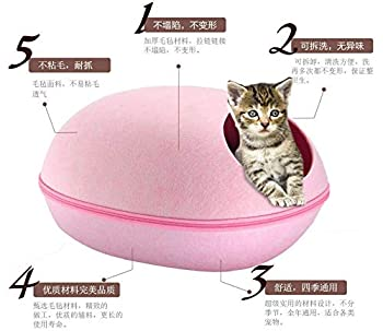 Weimay Maisons et Dômes pour Chats,2 en 1 Niches Maison d'animal Familier,Machine Lavable Pliable Lit du Cat,Trou du Chat Doux Chaud Nid Grotte Maison Lit avec Coussin Amovible