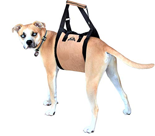 Travelin K9 Large Dog Lift Harness - Dog Support Harness - Dog Stair Lift - Dog Car Lift. For Disabled Dogs, Elderly Dogs, Injured Dogs, to support dogs back legs, and as a Dog Rehabilitation Harness