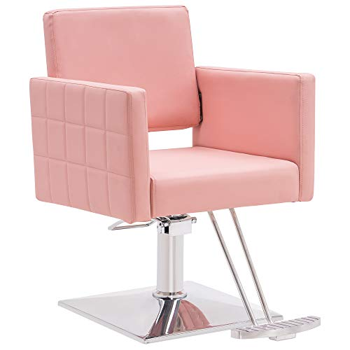 BarberPub Salon Chair for Hair Stylist, All Purpose Hydraulic Barber Styling Chair, Beauty Spa...