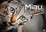 Miau - nuestros gatos domésticos - el calendario del gato - 2022 - calendario DIN A2