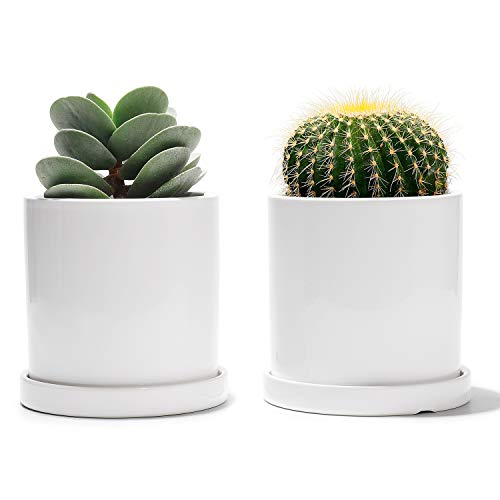 POTEY Ceramic Plant Pots with Saucers - 3.8