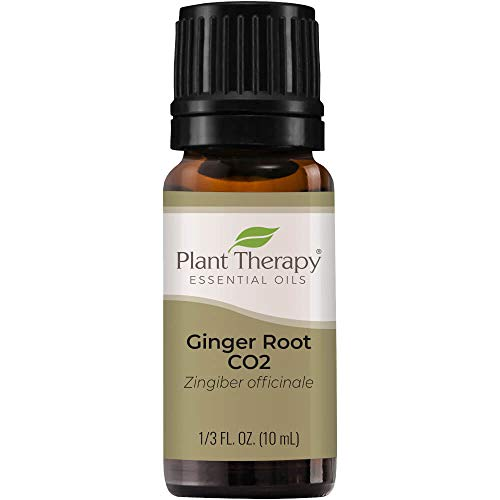 Plant Therapy Ginger Root CO2 Essential Oil 100% Pure, Undiluted, Natural Aromatherapy, Therapeutic Grade 10 mL (1/3 oz)