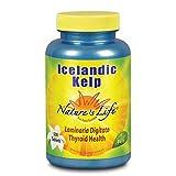 Nature's Life Icelandic Kelp   500 ct