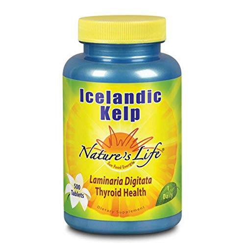 Nature's Life Icelandic Kelp | 500 ct