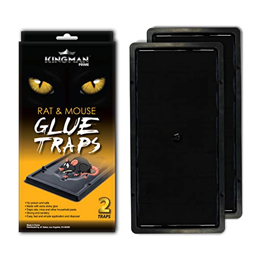 Kingman Prime Mouse Trap Rat Trap Glue Trap/Board (Large Size) (6 Pack / 12 Traps) Rodent Trap Safe Easy Non-Toxic