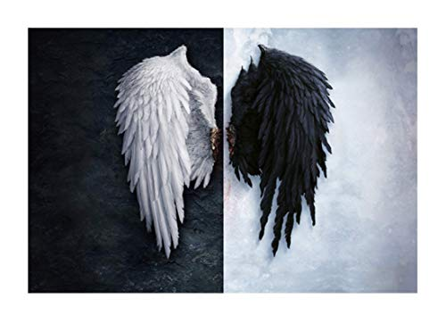 Black and White Angel Wings Canvas Paint Creative Feather Wings Poster Living Room Background Wall Art Pictures Home Decor-(50x70cm)X2 No Frame