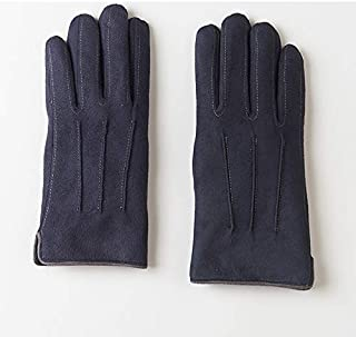 HNBY Suede Gloves Men's Gloves Plus Velvet Thick Winter Warm and Cold-Proof Touch Screen Gloves (Color : Blue)