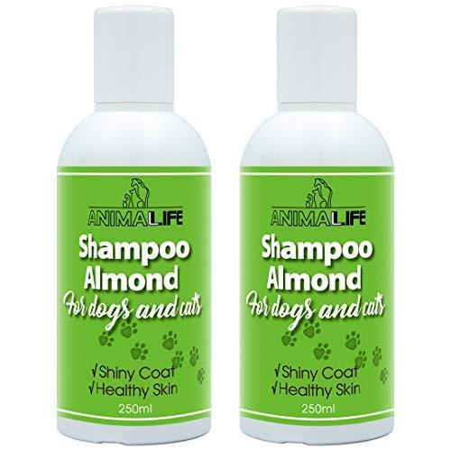 Champú Perros & Gatos 500ml - Aceite de Almendras - Aceites Esenciales de Lavanda & Menta Japonesa - Nutrición - Fácil de Peinar - Olor Agradable - Pelo Brillante & Piel Sana
