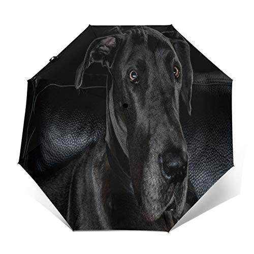 TISAGUER Paraguas automático de Apertura/Cierre,Perro Pastor Negro en el sofá Negro,Paraguas pequeño Plegable a Prueba de Viento