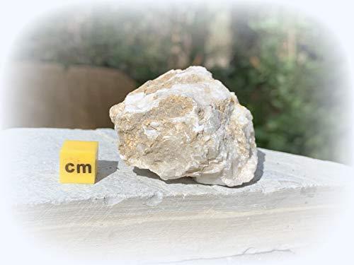 Baryt, hochwertiges Mineral, Kristall (RSA630)