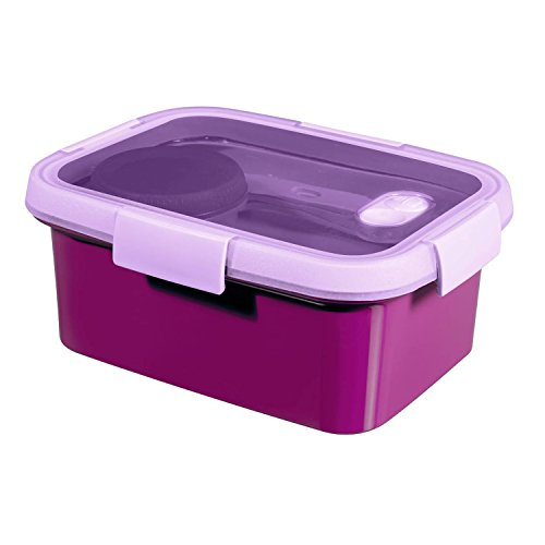 Curver To Go Lunch Kit 1,2L recipiente para llevar comida (violeta fucsia)