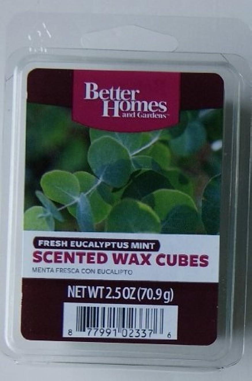 1 X Better Homes and Gardens Fresh Eucalyptus Mint Wax Cubes