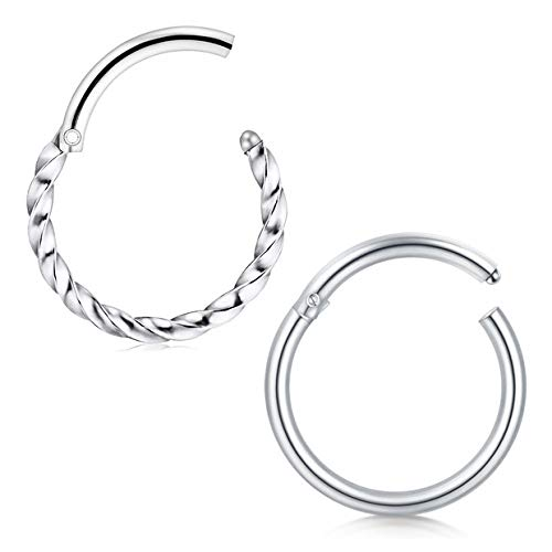 Briana Williams 2pcs Nose Rings 8mm Hinged Seamless Lip Clicker Tragus Helix Daith Ring 16G Surgical Steel Piercing