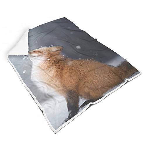 Rinvyintte Luchtdoorlatend, bont warm dekbed voor slaapbank, voel je goed voor volwassenen, casual stijl