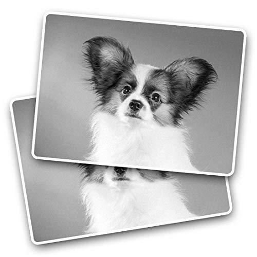 Impresionante pegatinas rectangulares (juego de 2) 7,5 cm – Papillon lindo cachorro perro mascotas calcomanías divertidas para portátiles, tabletas, equipaje, libros de chatarra, frigorífico, regalo genial #42767