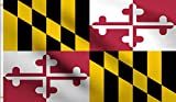DMSE State of Maryland Heraldic Banner Coat of Arms Flag 3X5 Ft Foot 100% Polyester 100D Flag UV Resistant (3  X 5  Ft Foot)