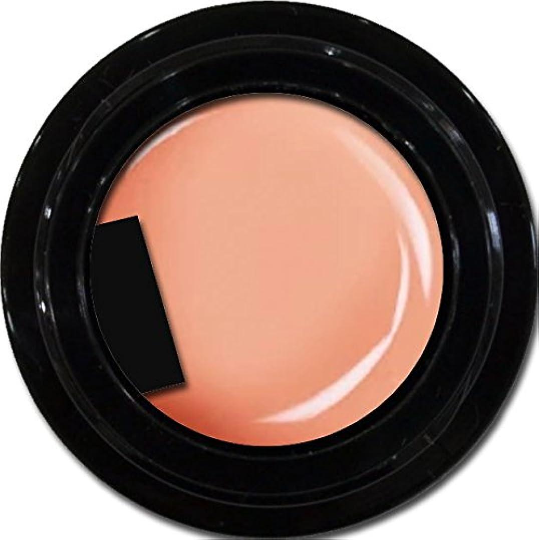 美徳ピン期間カラージェル enchant color gel M302 NavelOrange 3g/ マットカラージェル M302 ネーブルオレンジ 3グラム