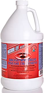 Eco Labs BSDTGAL Broad Spectrum Disease Treatment Gallon