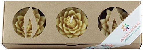Honey Candles Enlighten Floating Lotusblüten Natürliche Bienenwachskerze, 3 Stück