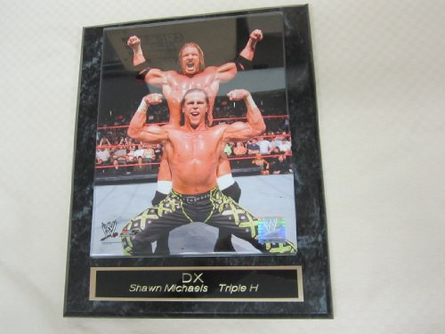 DX Shawn Michaels Triple H Engraved Collector Plaque w/8x10 Photo