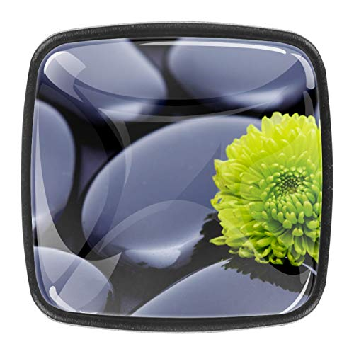 4 pomos de cristal para aparador, tiradores de cajón y armario con tornillos para cocina, aparador, armario, baño, armario Ston Zen