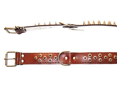 Milan Hundehalsband aus Leder mit Stachel-Nieten, 65cm/40mm, Braun
