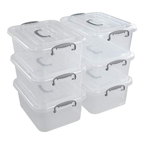 Dehouse Caja de almacenamiento de plástico transparente de 8 L, juego de 6 cajas de almacenamiento con tapa de plástico y tapas