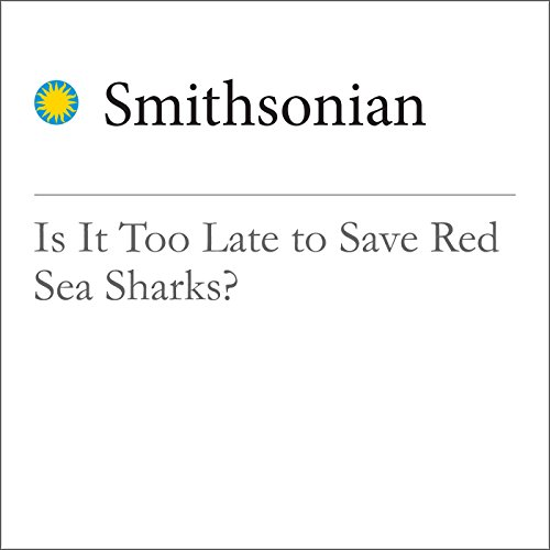 Is It Too Late to Save Red Sea Sharks? cover art