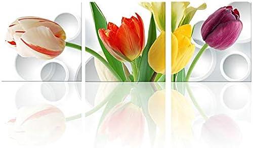 ganancia cero AWRT PaintingCanvas Picture Wall Picture Picture Picture Cocina Orquídea verde Impresión y Cartel de la Sala Habitación Arte Grabado Flor Estilo J 60X60cmX3 Sin Marco  ordenar ahora