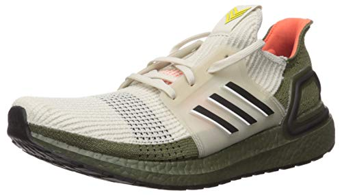 adidas Men's Ultraboost 19 m Running Shoe, Active Maroon/Maroon/Black, 6.5 UK