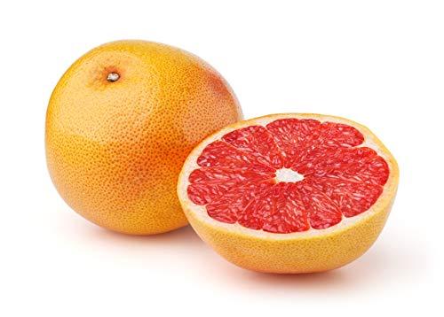 八鮮屋『グレープフルーツ(レッド)40玉』