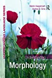 Understanding Morphology: Second Edition (A Hodder Education Publication)