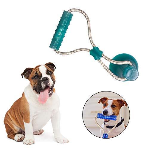 lossomly Hundespielzeug Mit Saugnapf Pet Molar Spielzeug Katzenspielzeug Pop Play Pet Toy Ball Hundezahnpflege Für Kleine Bis Mittelgroße Hunde Beißen expert