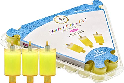 The Dreidel Company Hanukkah Pre Filled Jelled Oil Cups Candles Ready to Use Pre-Filled Jelled Oil Cups Made in Israel (Medium Jelled Oil Cups)